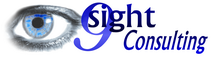 9sight Consulting: Insight beyond Business Intelligence Logo